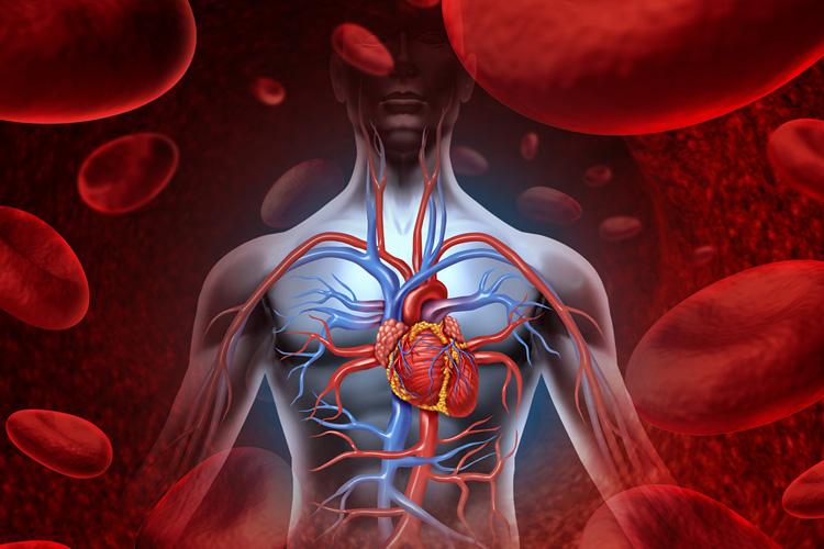 Detoxikace a magnetoterapie