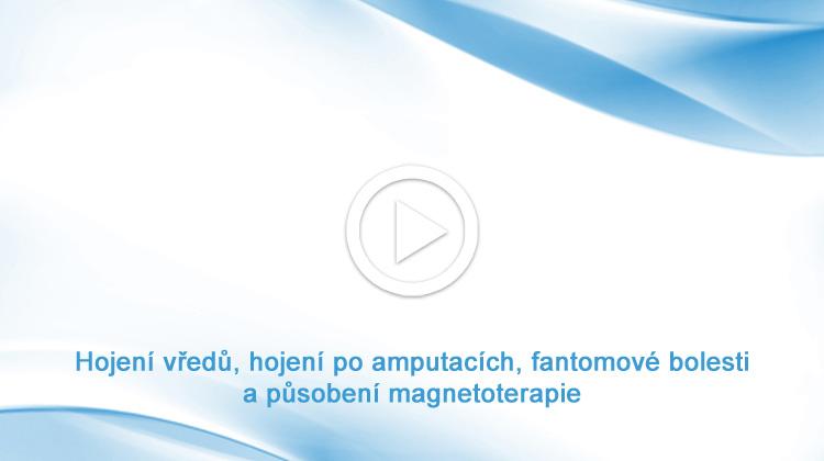 Hojení vředů, hojení po amputacích, fantomové bolesti a působení magnetoterapie